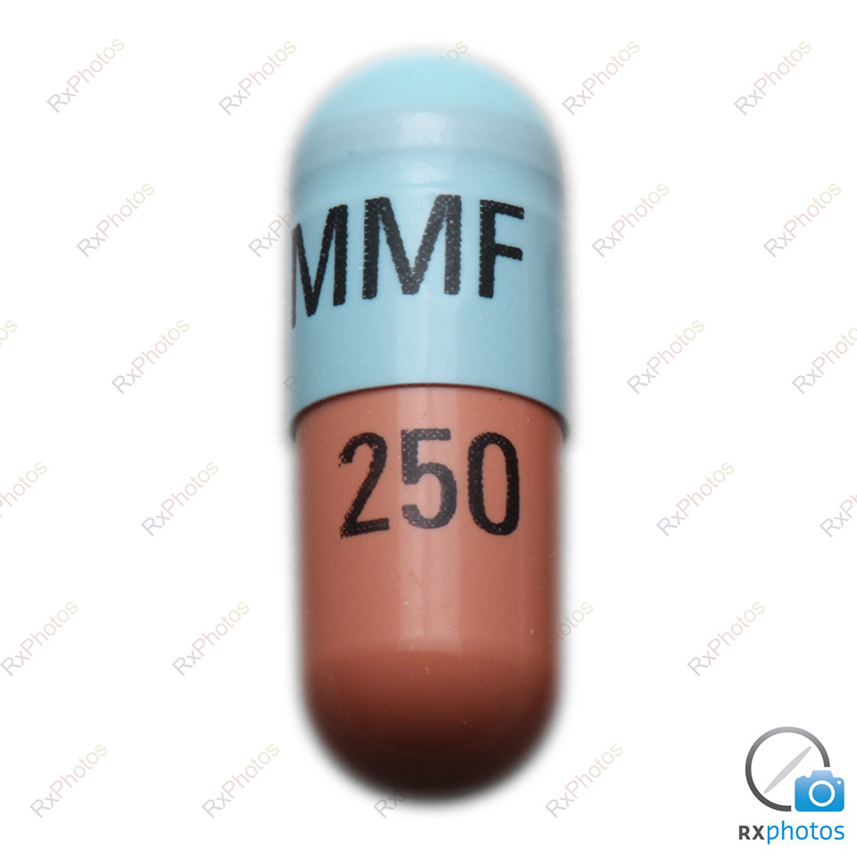 Jamp Mycophenolate capsule 250mg