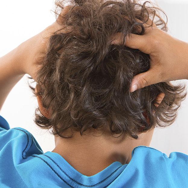 7 questions pour en finir avec les poux de tête